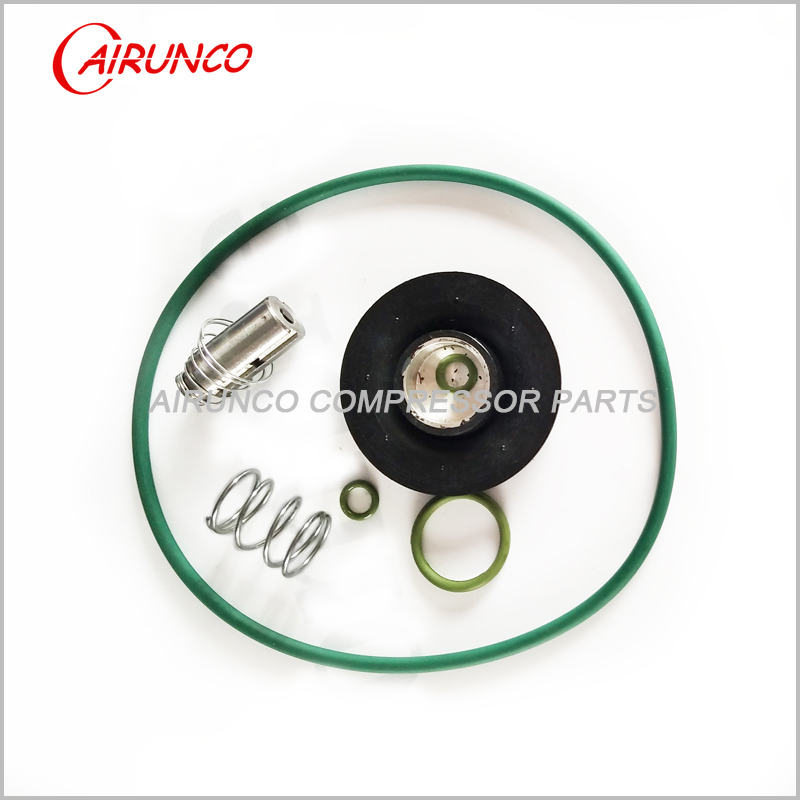 DRYER ROTOR. EXCHANGE KIT AC2906063300 air compressor replacement parts