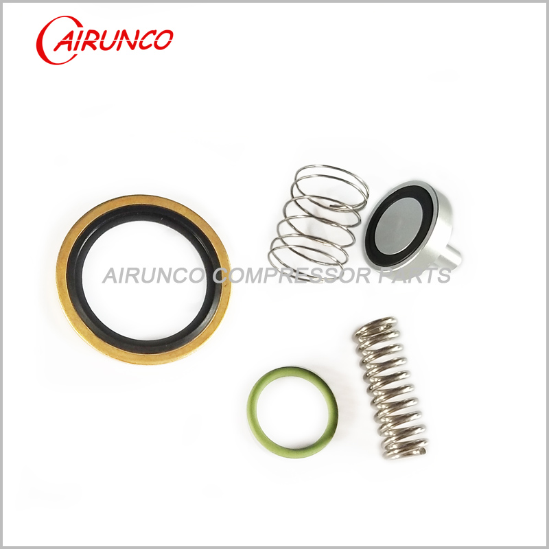 2901141100 MPV kit atlas copco air compressor parts